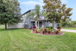 Photo of 3146 Whitley Bay Court, LAND O LAKES, FL 34638 (MLS # T3182444)