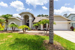 Photo of 5418 Pine Bay Drive, TAMPA, FL 33625 (MLS # T3182844)