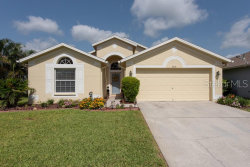 Photo of 3719 Lonewood Court, LAND O LAKES, FL 34638 (MLS # T3182972)
