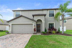 Photo of 12561 Mountain Springs Place, TRINITY, FL 34655 (MLS # T3185032)