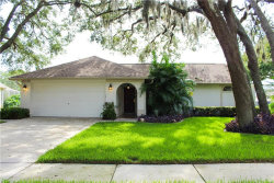 Photo of 19601 Wyndmill Circle, ODESSA, FL 33556 (MLS # T3185315)