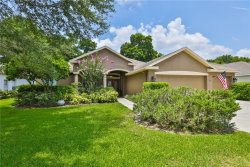 Photo of 2713 Durant Trails Boulevard, DOVER, FL 33527 (MLS # T3185418)