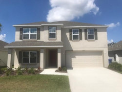 Photo of 10063 Geese Trail Circle, SUN CITY CENTER, FL 33573 (MLS # T3186259)
