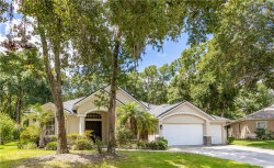 Photo of 12612 River Birch Drive, RIVERVIEW, FL 33569 (MLS # T3186400)