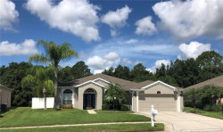 Photo of 5707 Riva Ridge Drive, WESLEY CHAPEL, FL 33544 (MLS # T3186714)