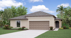 Photo of 10042 Caraway Spice Avenue, RIVERVIEW, FL 33578 (MLS # T3187078)