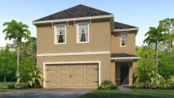 Photo of 10207 Geese Trail Circle, SUN CITY CENTER, FL 33573 (MLS # T3187348)