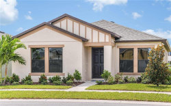 Photo of 12409 Streambed Drive, RIVERVIEW, FL 33579 (MLS # T3187546)