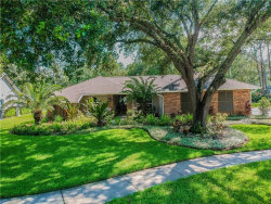 Photo of 5203 Dwire Court, TAMPA, FL 33647 (MLS # T3187711)