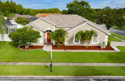 Photo of 17918 Sparrows Nest Drive, LUTZ, FL 33558 (MLS # T3187720)