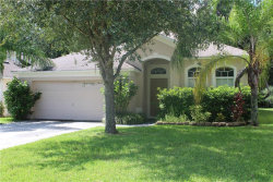 Photo of 35220 Meadow Reach Drive, ZEPHYRHILLS, FL 33541 (MLS # T3187830)