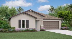 Photo of 11228 Beeswing Place, RIVERVIEW, FL 33578 (MLS # T3188259)