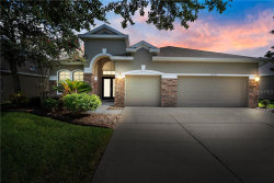 Photo of 16310 Bridgewalk Drive, LITHIA, FL 33547 (MLS # T3191893)