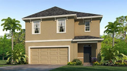 Photo of 16826 Secret Meadow Drive, ODESSA, FL 33556 (MLS # T3192418)