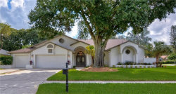Photo of 16101 Belle Meade Boulevard, ODESSA, FL 33556 (MLS # T3193307)