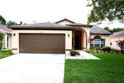Photo of 1701 Elk Spring Drive, BRANDON, FL 33511 (MLS # T3193451)