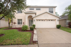 Photo of 11239 Flora Springs Drive, RIVERVIEW, FL 33579 (MLS # T3193790)