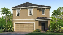 Photo of 10210 Geese Trail Circle, SUN CITY CENTER, FL 33573 (MLS # T3194227)