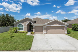 Photo of 2305 Triggerfish Court, HOLIDAY, FL 34691 (MLS # T3194362)