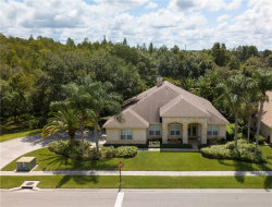 Photo of 18615 Chemille Drive, LUTZ, FL 33558 (MLS # T3194838)