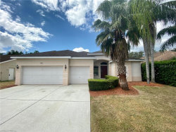 Photo of 4505 Anaconda Drive, NEW PORT RICHEY, FL 34655 (MLS # T3195590)