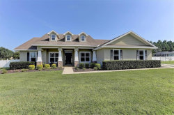 Photo of 13204 Jaudon Ranch Road, DOVER, FL 33527 (MLS # T3197709)
