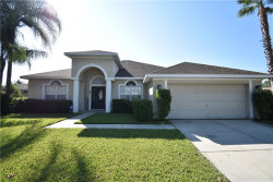 Photo for 19701 Spring Willow Court, ODESSA, FL 33556 (MLS # T3197941)