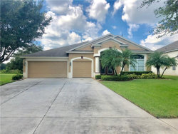 Photo of 3549 Fortingale Drive, WESLEY CHAPEL, FL 33543 (MLS # T3198188)