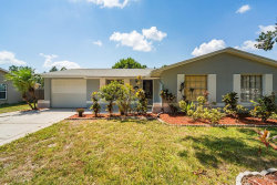 Photo of 806 Kirkcaldy Way, VALRICO, FL 33594 (MLS # T3198384)