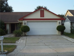 Photo of 2068 Shadow Pine Drive, BRANDON, FL 33511 (MLS # T3198539)