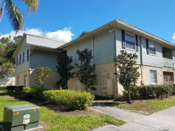 Photo of 213 Berry Tree Place, Unit 213, BRANDON, FL 33510 (MLS # T3198559)