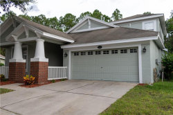 Photo of 4810 Sky Blue Drive, LUTZ, FL 33558 (MLS # T3198649)
