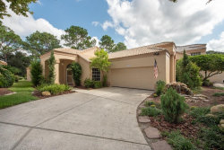 Photo of 9320 Fairway Lakes Court, TAMPA, FL 33647 (MLS # T3198858)