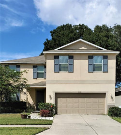 Photo of 1111 Canyon Oaks Drive, BRANDON, FL 33510 (MLS # T3198917)
