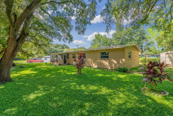 Photo of 312 Papaya Drive, TAMPA, FL 33619 (MLS # T3199330)