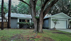 Photo of 4807 Cypress Ridge Place, TAMPA, FL 33624 (MLS # T3199415)