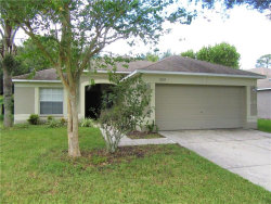 Photo of 12229 Luftburrow Lane, HUDSON, FL 34669 (MLS # T3199480)