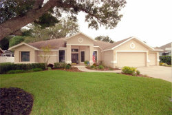 Photo of 4024 Eagles Nest Drive, VALRICO, FL 33596 (MLS # T3199736)