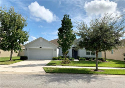 Photo of 20113 Natures Hike Way, TAMPA, FL 33647 (MLS # T3199976)