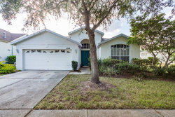 Photo of 6606 Brighton Park Drive, APOLLO BEACH, FL 33572 (MLS # T3201099)
