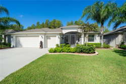 Photo of 10190 Hyannisport Loop, SAN ANTONIO, FL 33576 (MLS # T3201530)