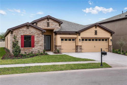 Photo of 21853 Indian Summer Drive, LAND O LAKES, FL 34637 (MLS # T3203266)
