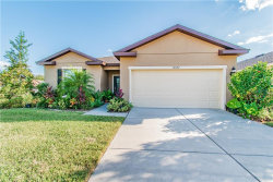 Photo of 15582 Sword Lily Place, BROOKSVILLE, FL 34604 (MLS # T3203653)