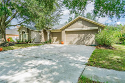 Photo of 3808 Triple Jump Street, VALRICO, FL 33596 (MLS # T3203822)