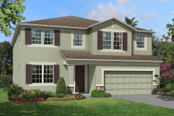 Photo of 10134 Tuscan Sun Avenue, RIVERVIEW, FL 33578 (MLS # T3205039)