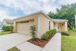 Photo of 18112 Birdwater Drive, TAMPA, FL 33647 (MLS # T3205794)