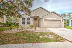 Photo of 5132 Clover Mist Drive, APOLLO BEACH, FL 33572 (MLS # T3208351)