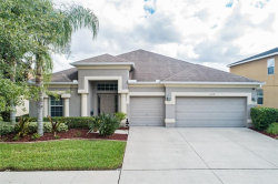 Photo of 11458 Newgate Crest Drive, RIVERVIEW, FL 33579 (MLS # T3208805)