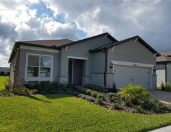 Photo of 4700 Ballast Crest Cove, LAND O LAKES, FL 34638 (MLS # T3208865)