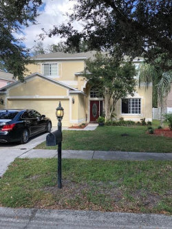 Photo of 10486 Lucaya Drive, TAMPA, FL 33647 (MLS # T3209493)